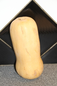 buternut 002